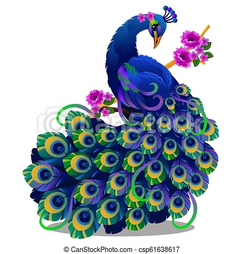 Beautiful Bird Peacock Sitting On A Perch With Flowers Isolated On White Background Vector Cartoon Close Up Illustration