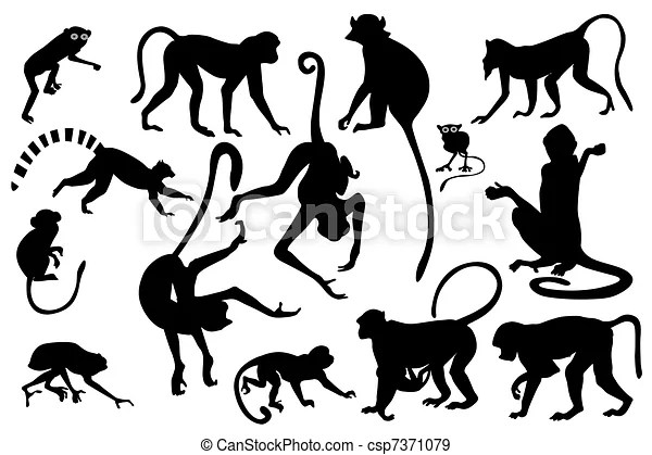 Stock Illustration Of Monkey Silhouettes Collection