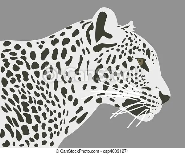Ceylon Leopard Vector Illustration Side View Profile
