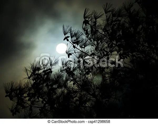https www canstockphoto com dark cloudy full moon pine tree 41298658 html