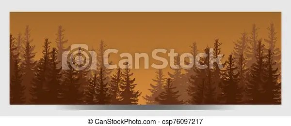How to draw a coniferous tree. Illustration Of Coniferous Forest Travel Infographic Forest Silhouette Banner Canstock