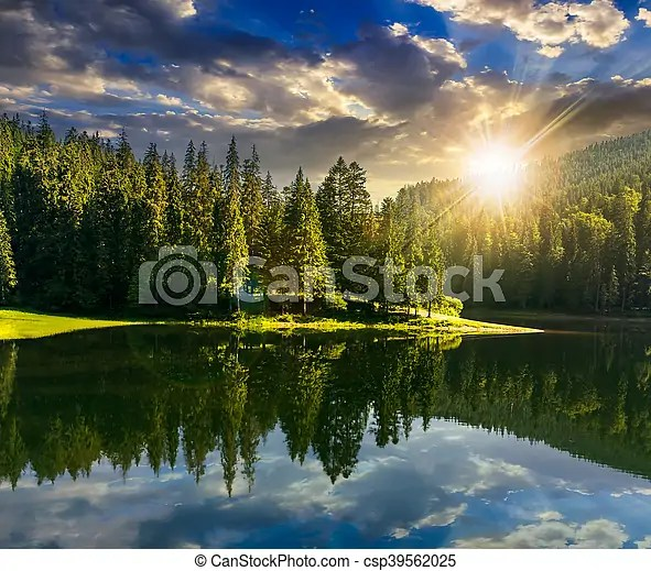 Your sunset mountain lake stock images are ready. Lake Near The Mountain In Pine Forest At Sunset Lake Near The Pine Forest In Mountains In Sunset Light Canstock