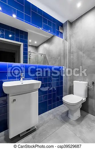 Bleu Salle Bains Couleurs Gris Bleu Toilette Salle Bains Fonctionnel Branche Miroir Nouveau Bassin Carrelage Canstock