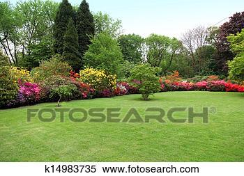 Archivio Immagini - bello, manicured, prato, in, uno, estate, giardino. Fotosearch - Cerca Archivi fotografici, Immagini murali, Fotografie e Foto Clipart