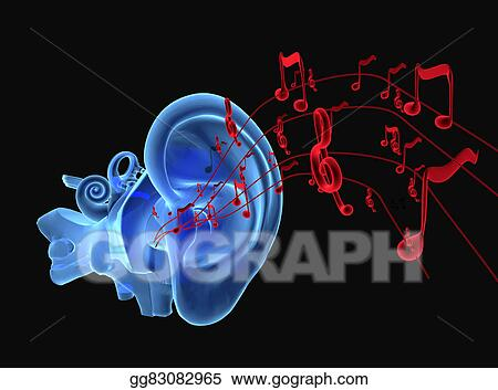 Stock Illustration - 3d ear anatomy with notes. Clipart ...