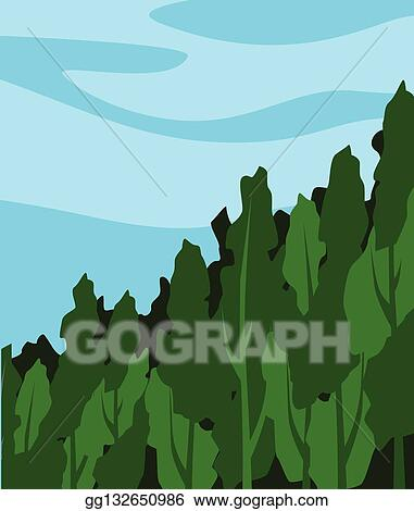 In a dense forest, the mist contains tiny droplets of water, which act as particles of colloid dispersed in air. Dense Forest Clip Art Royalty Free Gograph