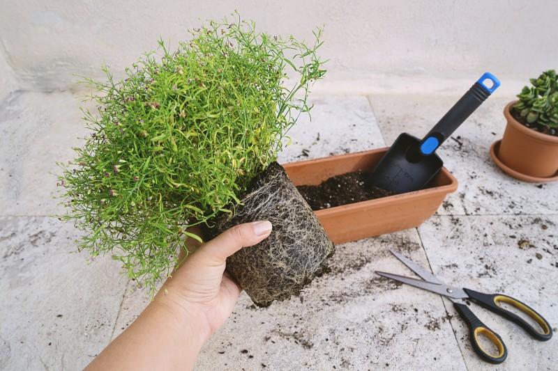 faire une jardiniere de balcon nos