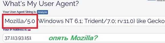 агент IE