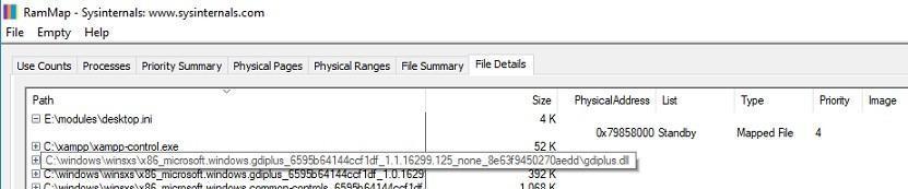 file details rammap