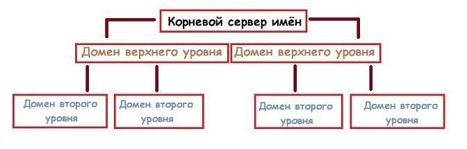 структура dns