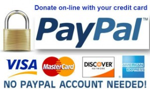 paypal__donate