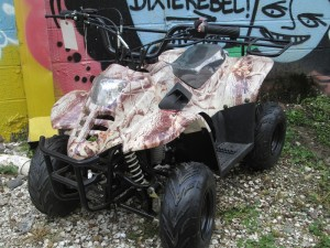 110ATV-S ($700 Small ATV, Automatic, TopSpeed 35mph, has governor)