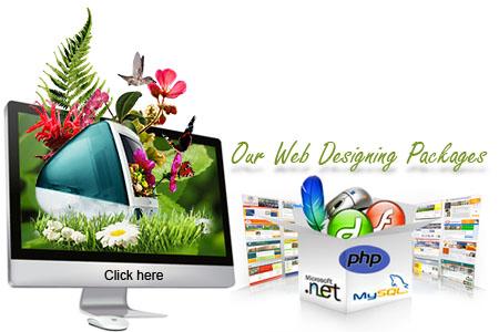 Web Designing Tutorials For Beginners Free Download Computerpakistan
