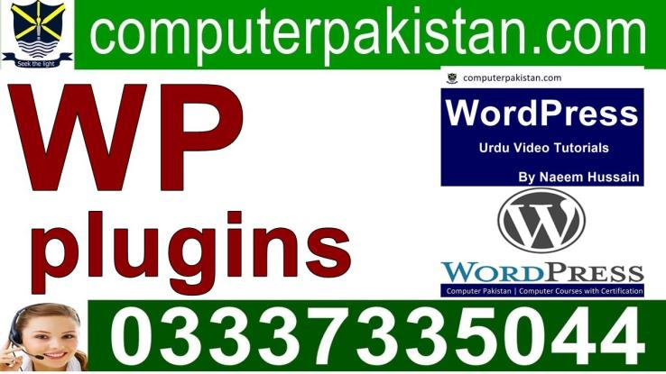 WordPress author plugin widget for Beginners in Pakistan