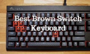 Best Brown Switch Keyboard