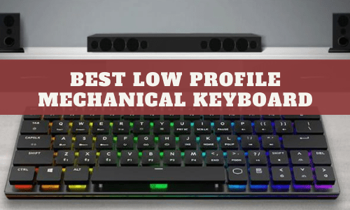 Best Low Profile Mechanical Keyboard