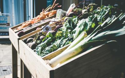 Andalucía invirtió más de mil millones en I+D+I en agroalimentación en 10 años