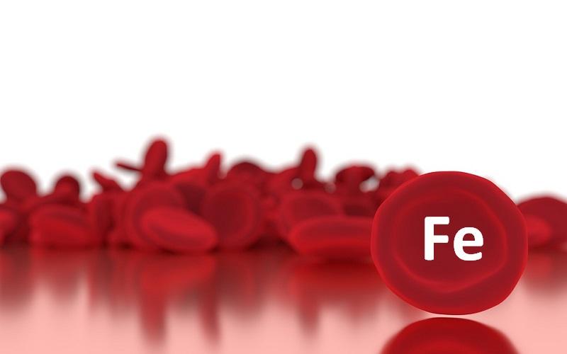 hierro en sangre traduccion en ingles