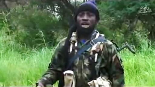 Capture d'écran du 8 août 2016 d'une vidéo de Boko Haram montrant son leader Abubakar Shekau | BOKO HARAM/AFP | HO, HO, HO