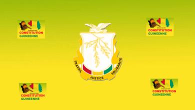 CONSTITUTION Guinéenne