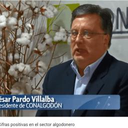 Agricultura al dia/Cifras positivas en el sector algodonero