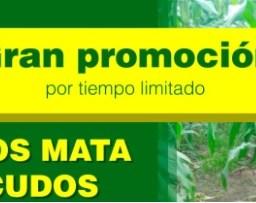 Gran promoción Tubos Mata Picudo.