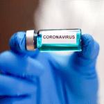 Así desarrollan la vacuna contra el coronavirus - Así están desarrollando la vacuna contra el coronavirus