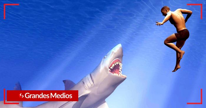 Esto es lo que debes hacer para sobrevivir a un ataque de tiburón según un experto 2 - Lo que debes hacer para sobrevivir a un ataque de tiburón - #Noticias