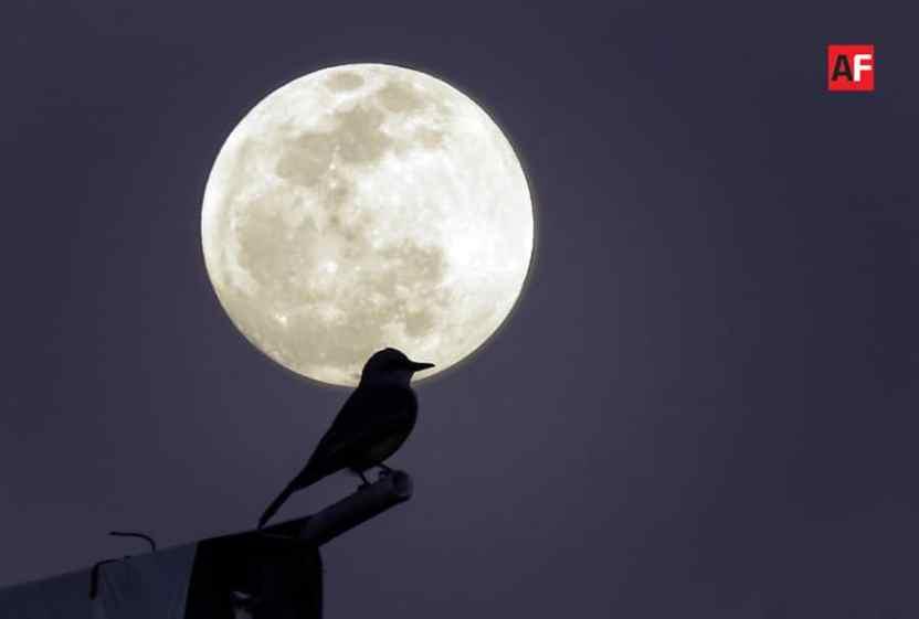 superluna luna - Hoy habrá súper luna - #Noticias