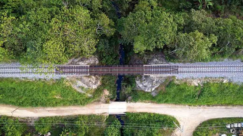 trenuno - Contrasta informe de Conacyt sobre Tren Maya con discurso gubernamental - #Noticias
