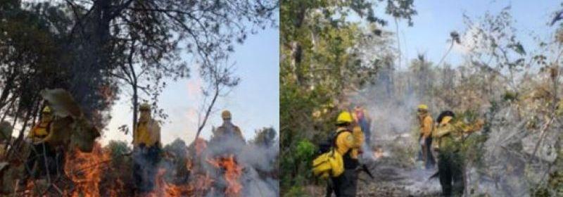incendios - Continúan activos más de 50 incendios forestales en el país