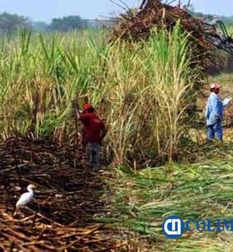Entrega Sader 18.9 mdp a pequeños productores  - Entrega Sader 18.9 mdp a pequeños productores