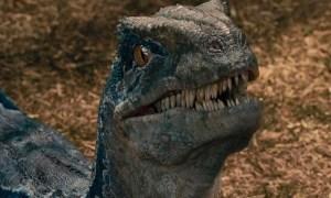jurassic world.jpgfit1000600 - La cuarta entrega de Jurassic World podría estar más cerca de lo esperado