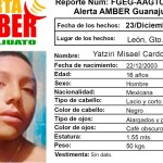 madres desaparecidos guanajuato - Rosario busca a su hijo adolescente en Guanajuato… desde Navidad