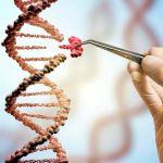 Qué es la epigenética y cómo actúa en nuestro cuerpo - ¿Qué es la epigenética y cómo actúa en nuestro cuerpo?