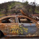 GettyImages 1132832439 - Muere una mujer mientras caminaba por Montañas de Santa Monica en medio de ola de calor