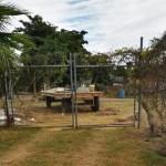 el porvenir ahome crop1606672951418.jpg 242310155 - Vecino de El Porvenir, Ahome, denuncia bloqueo en acceso a su terreno