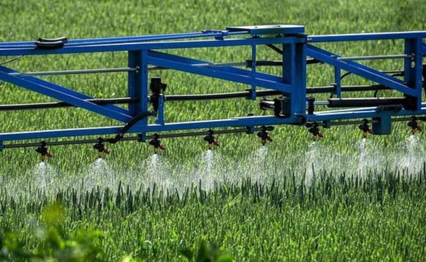 decreta mxxico eliminacixn del glifosato en la industria agropecuaria 1 crop1609550329776.jpg 242310155 - Decreta México eliminación del glifosato en la industria agropecuaria