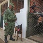 soldados guatemala.jpeg 242310155 - Soldados mexicanos son detenidos y llevados a Guatemala