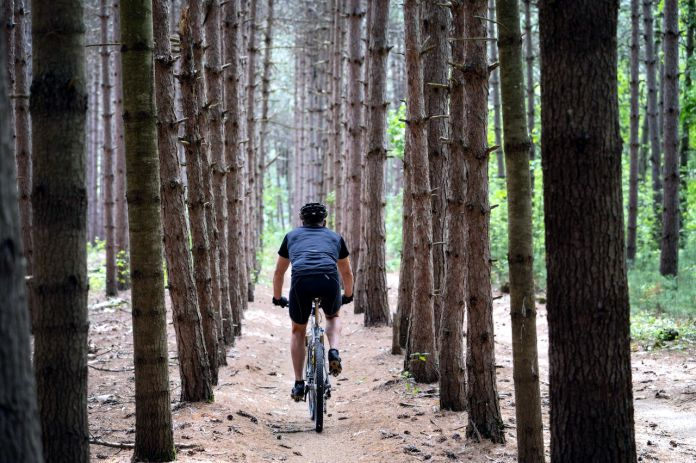 Grandes rutas en bici para todo tipo de ciclistas - Grandes rutas en bici para todo tipo de ciclistas