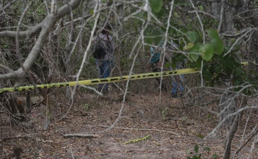 hallan restos humanos a espaldas de santa fe en mazatlxn x2x.jpeg 242310155 - Hallan restos humanos a espaldas de Santa Fe en Mazatlán