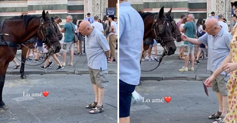 """abuelo caballo libre - Abuelito se acercó a un caballo con carreta y le preguntó """"si quería ser libre"""". Quería ayudarlo"""