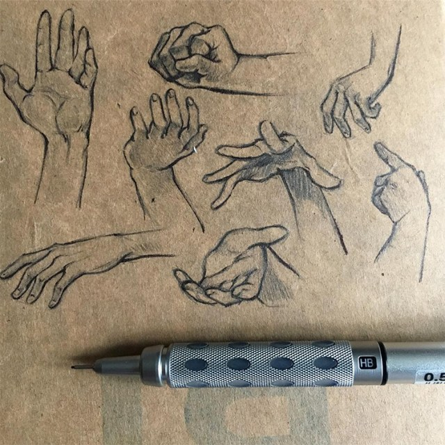 Toned paper hand sketches