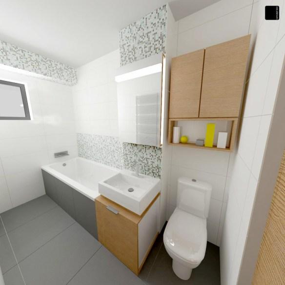 apartament tineretului_baie