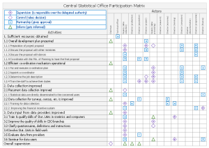 Responsibility assignment matrix  Central statistical office