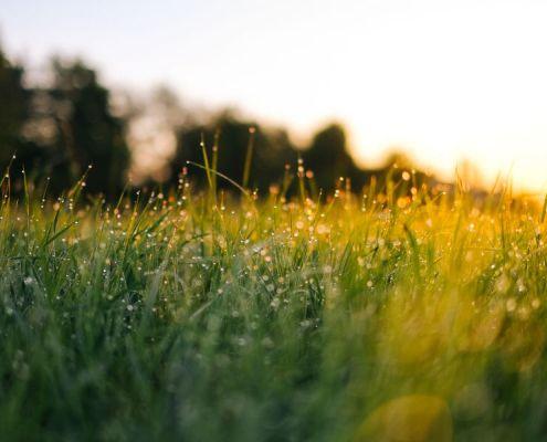 Zelfrealisatie breekt in een klap met alles wat er aan voorwaarden in jou leeft.
