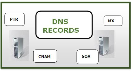 what is DNS RECORD