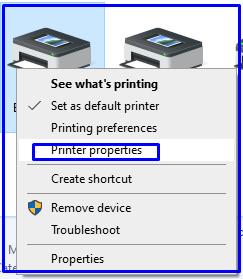 Printer properties Epson LQ-310