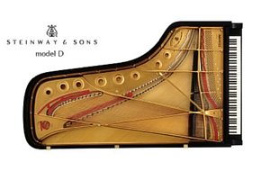 piano de concert Steinway modele d 274 - prevalet dijon