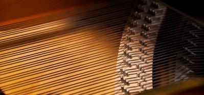PREVALET PIANO DIJON - détail cordes slide 1